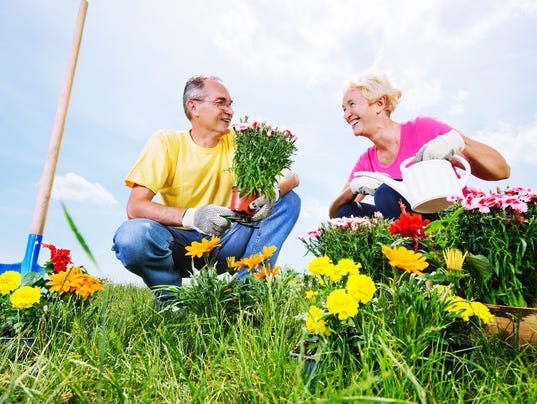 Beautiful mature couple planting flowers.