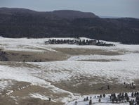 Wildfires increase with shrinking snowpack, changes in snowmelt timing