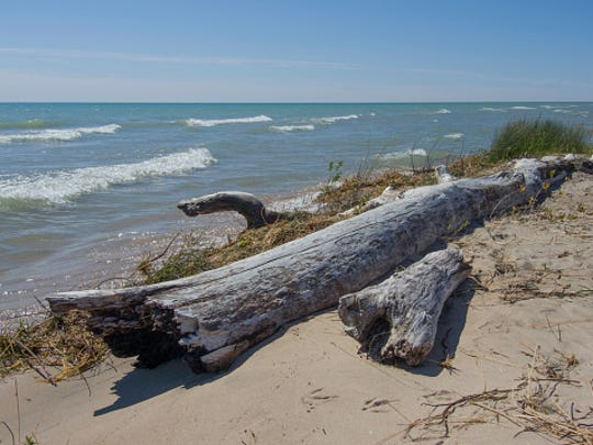 Lake Michigan is one of our five amazing Great Lakes.