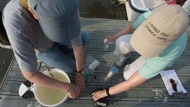 Ron and Bev Stoner prepare samples to be tested at their site on the Broadkill River.