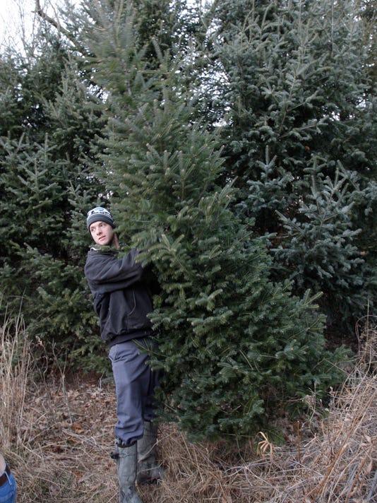 -she n Christmas Tree Farm 1206-gck-14.JPG_20131206.jpg