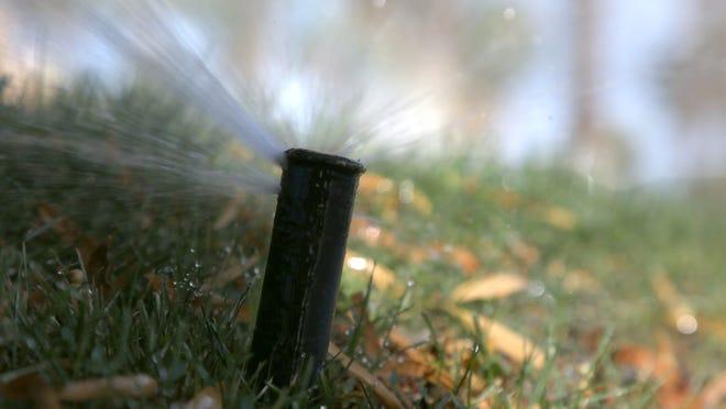 A sprinkler soaks a lawn in Palm Springs.