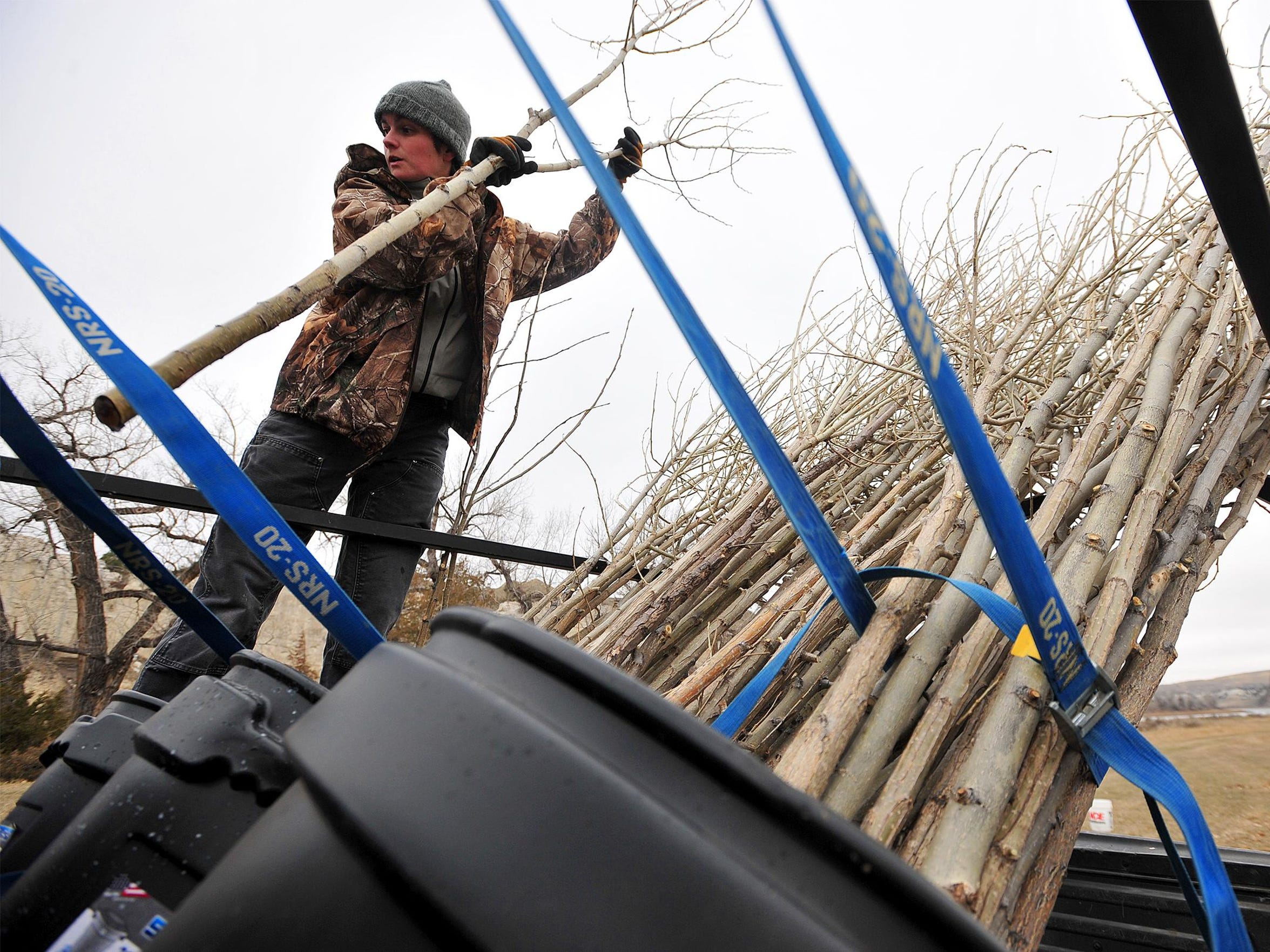 Robin McQuinn, a volunteer from Billings, unloads cottonwood