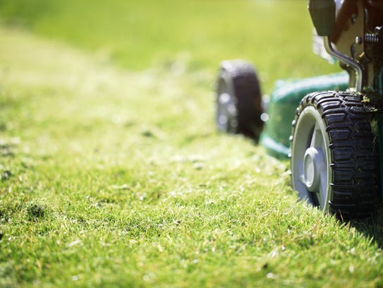 Don't mow wet grass. It can be unsafe and spread disease.