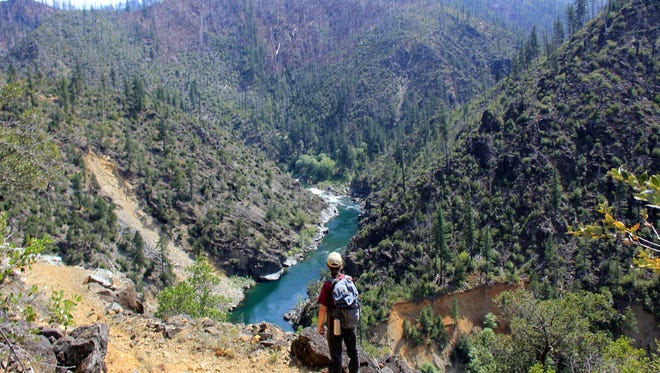 Justin Rohde hikes the Illinois River Trail in search of kalmiopsis leachiana, a rare wildflower found only in the Siskiyou Mountains and Kalmiopsis Wilderness area of southwest Oregon.
