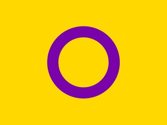 A flag denoting the intersex community.