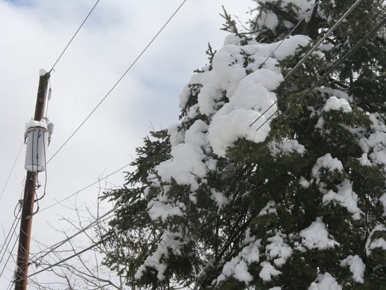 Fresh snow builds up on tree branches and power lines