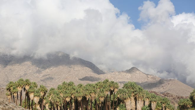 The Indian Canyons are the ancestral home of the Agua Caliente Band of Cahuilla Indians.