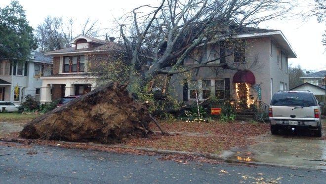 A tree fell onto a house early Saturday morning on Forest Ave. in Shreveport.
