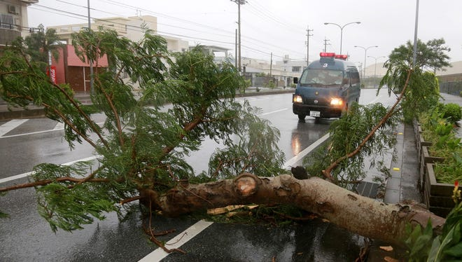 A police car stops in front of a fallen tree at a road in Kadena, in the Japanese southwestern island of Okinawa, Japan, August 24, 2015.