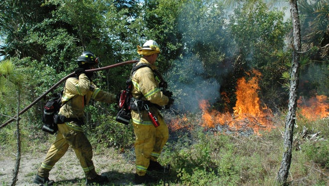 St. Lucie County Environmental Resources Department is scheduled to close the Teague Hammock portion of Steven J. Fousek Preserve on Saturday, Feb. 11 through the weekend, while staff conducts a prescribed burn on roughly 300 acres, weather permitting.