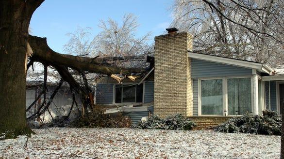Tree fell on a house