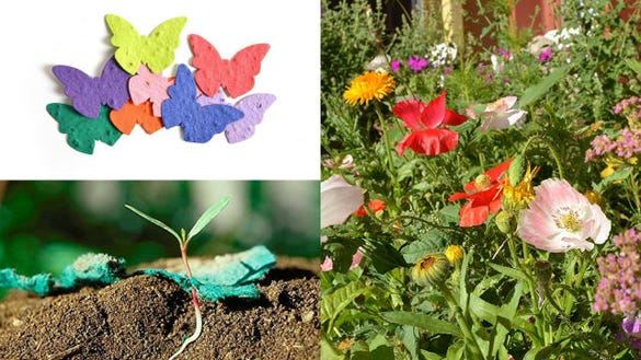 Bloomin Seed Paper Butterfly