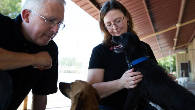 Owners of Your Pet Space David Jones, left, and Joy Jones interact with Sollie and Boots, right, a rescue animal now up for adoption, July 20, 2016. Your Pet Space is a cage-free dog daycare and boarding facility.