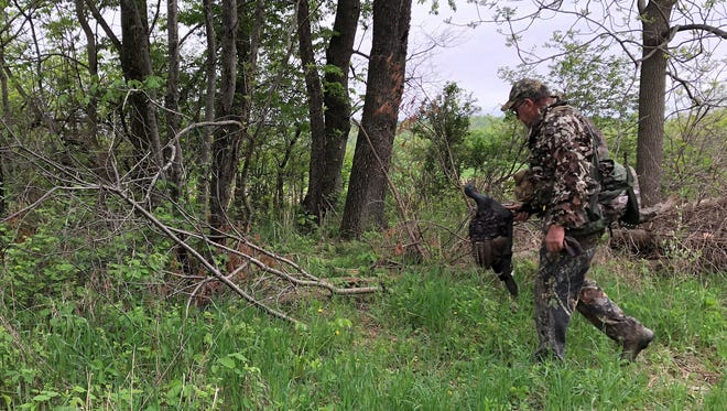 Doug Duren carries a turkey decoy along the edge of a woods on his farm in Richland County.