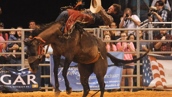 Blade Elliott, of Centreville, Ala., rides bareback at a recent Indiantown Rodeo in Indiantown. The annual event included saddle bronc riding, steer wrestling, barrel racing, tie-down roping and bull riding.