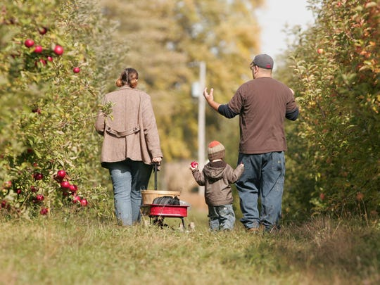 The Fraley family picks apples at Tuttle Orchards.