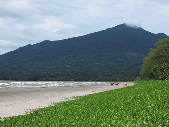 The Maderas Volcano looms at the end of a beach on Ometepe Island in Nicaragua.