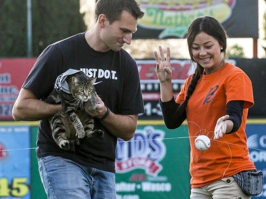 Tara the cat baseball art.jpg
