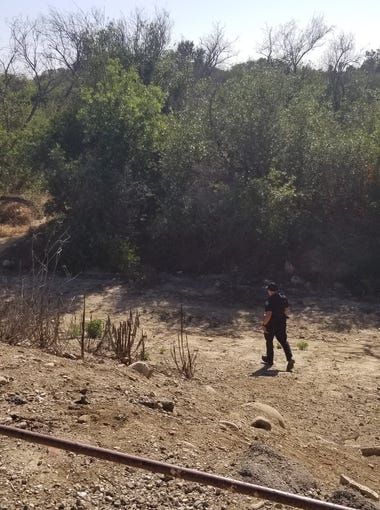 Ventura police were investigating a body found in the Ventura River bottom Friday afternoon.