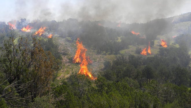 Smokey Bear Ranger District crews conducted controlled burns to thin the forest in August.