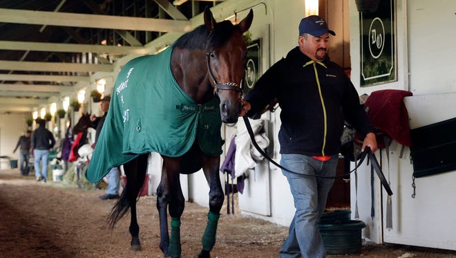 A hot walker takes Kentucky Derby entrant Nyquist for a walk after a workout at Churchill Downs on Friday, May 6, 2016, in Louisville, Ky.