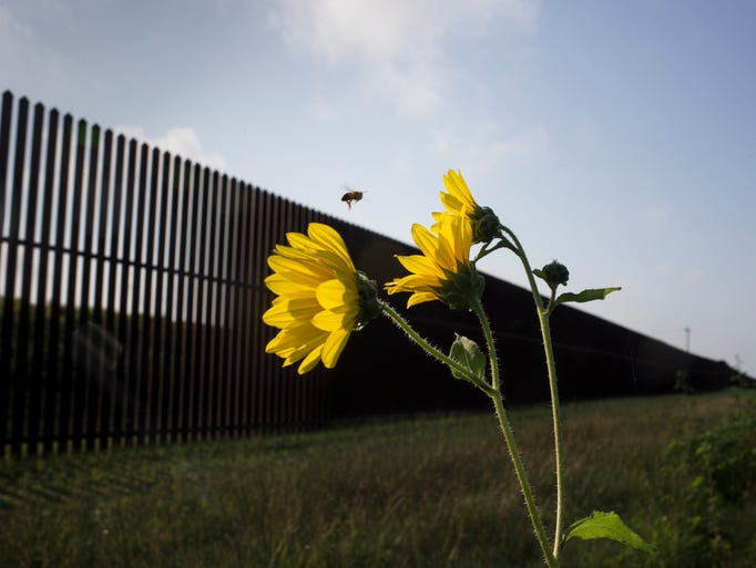 The border wall along Southmost Road in Brownsville,