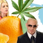 Marlette: Pitbull, Pam Bondi, and pot-infused oranges in 2017