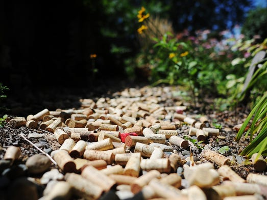 Part of Laurel Lather's uncompleted wine cork path in her garden on Wednesday, Aug. 20, 2014, at her home in Sioux Falls, S.D.