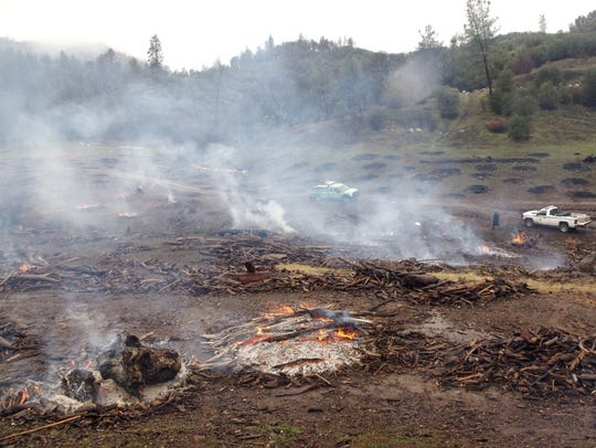 A U.S. Forest Service crew burns off piles of driftwood