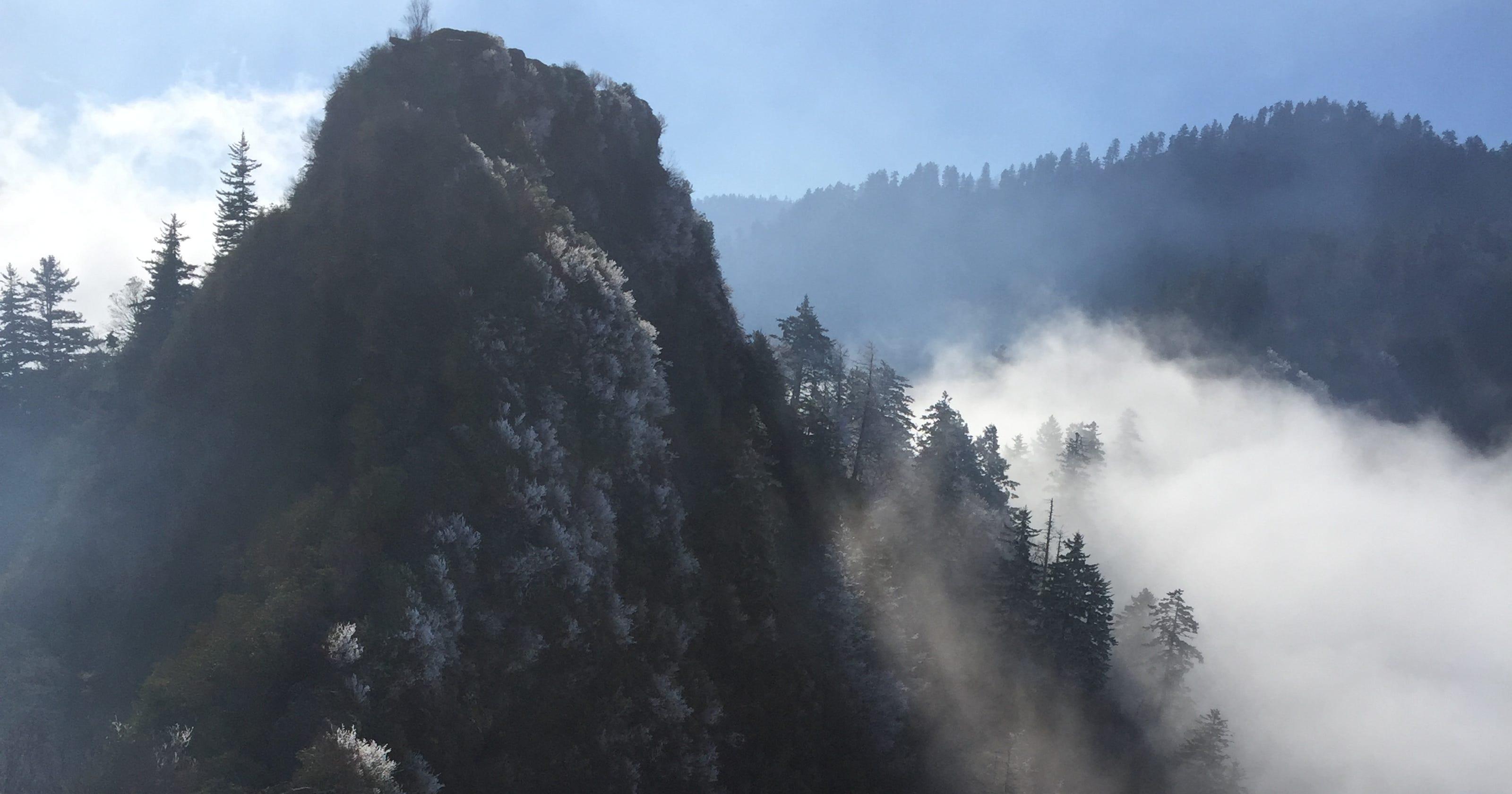 Gatlinburg wildfire began as a harmless spark