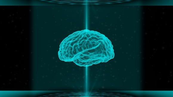 A human brain scan.