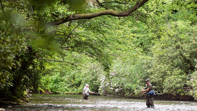 Fly fisherman wait for fish to bite in the Davidson River along U.S. 276 in Pisgah National Forest in this 2017 photo.  Pisgah Forest.