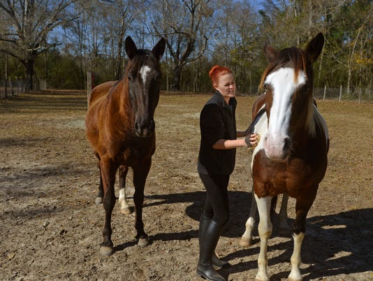 Panhandle Equine Rescue 9