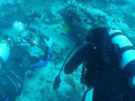 UCF Dive Club 2