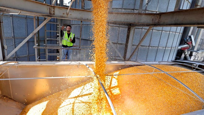 Much of Wisconsin's corn crop is slated for production of ethanol, a fuel additive used in gasoline.