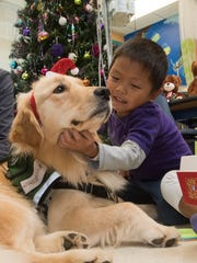 Sacred Heart Hospital's new therapy dog, Sprout, gets