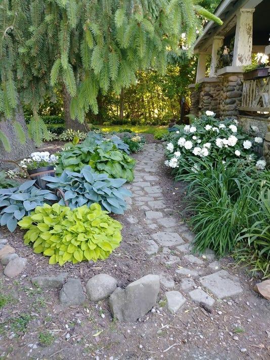 My Hosta Garden This Week S Homestyle Photo Contest Winner