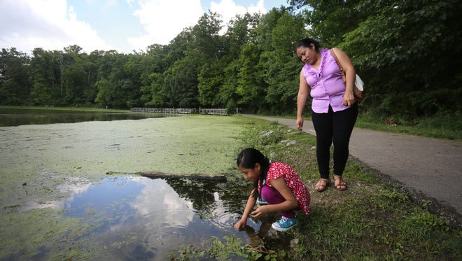Yury Escalante, 8, stops to hunt for snails with her mother, Modesta Escalante, during a family walk through Sharon Woods.