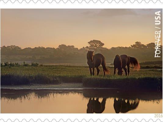 636004743022866067-stamp.jpg