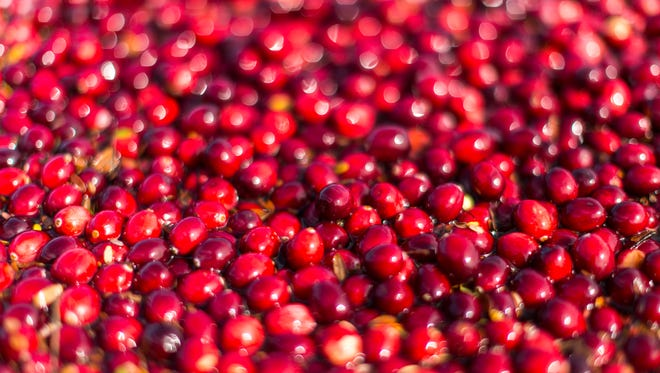Cranberries are excellent sources of tannins.