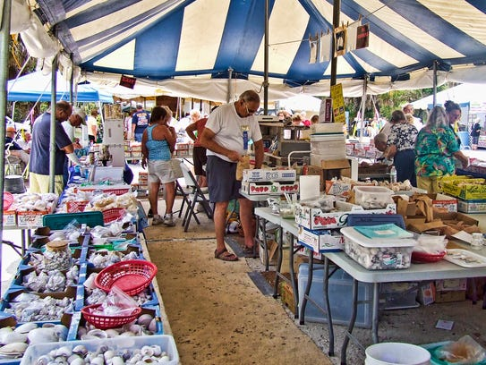 Spring training shell fair shrimp fest coming to swfl for Craft fair fort myers