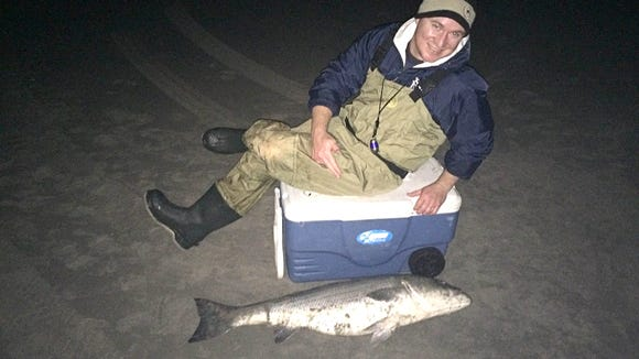 Dom with a 36 lb., striper that hit around dead low, around 9pm, on a 5/0 hook with a smaller piece of bunker. 11/4/15.