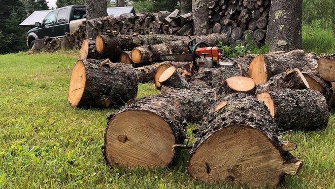 Firewood chunks await splitting outside Tom Heberlein's shack in Ashland County.
