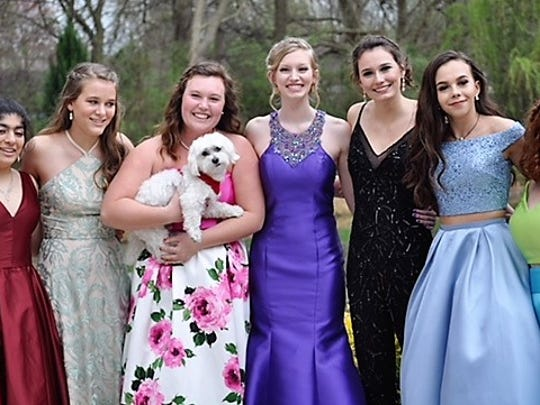 Girls' Prom Night - Rubina Cheema's parents hosted a pre-prom party for a group of Castle Juniors for their recent prom. In the photo from left are Rubina, Evelyn Weaver, Elizabeth Cluck (holding Bijoux), Caitlyn Sozio, Elise Renschler, Erica Williams and Hayley Hazelip.