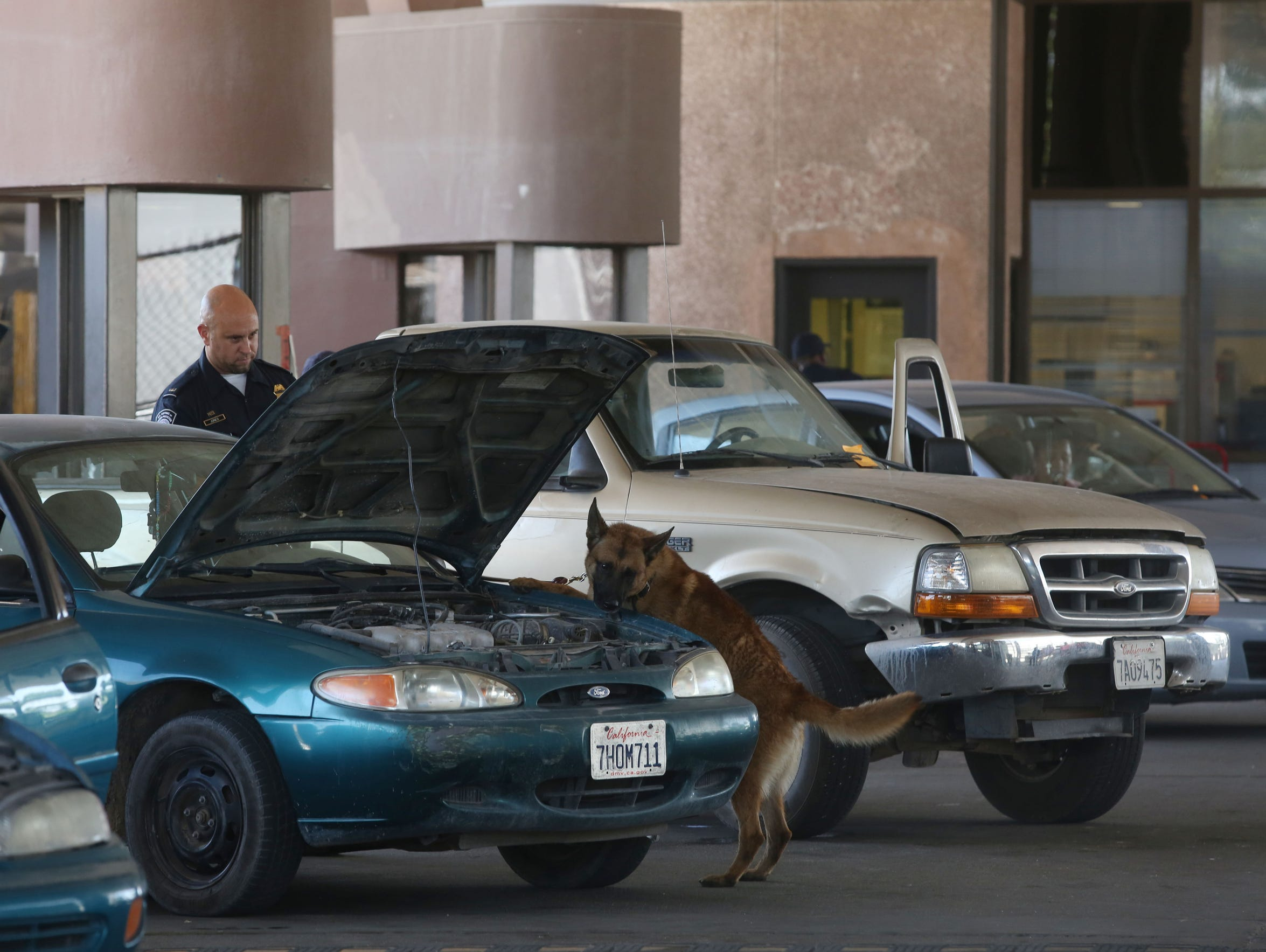 A Customs and Border Patrol officer's dog looks for