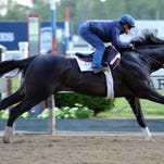 Honor Code works earlier this summer at Belmont Park.