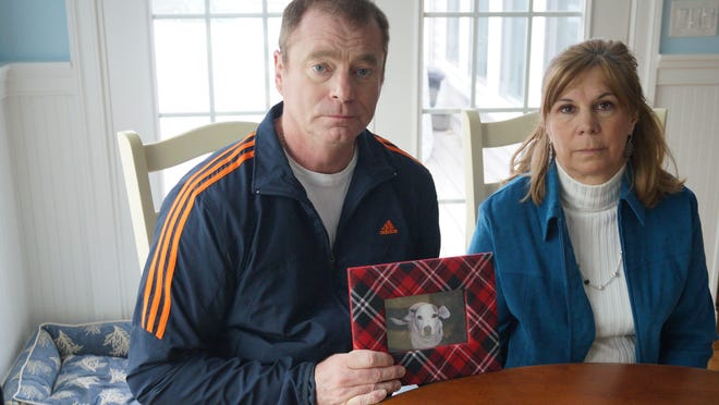 John and Nancy Smith, of Milton, show a photo of their dog, Millie, seized by animal control officers after allegedly biting a neighbor and the neighbor's dog. The Smiths (seen here in April, 2013) have filed a lawsuit alleging the officers overstepped their authority under the law by applying for a search and seizure warrant.