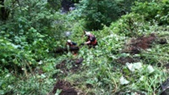 Two people died and four were sent to the hospital Sunday morning after the group drove off a steep embankment in Willamina.