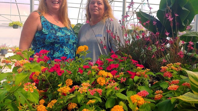Meg Wethington and Eva O'Steen plan to expand the beauty of plants around New Bern with their new business Corners of Eden and its non-profit Eden Elsewhere community projects.